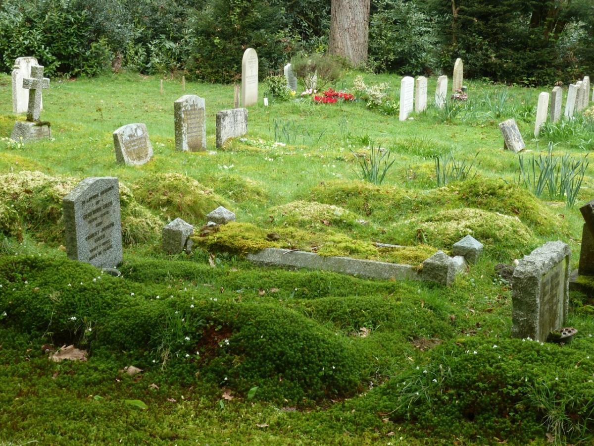 Bumpy graveyard, Milland