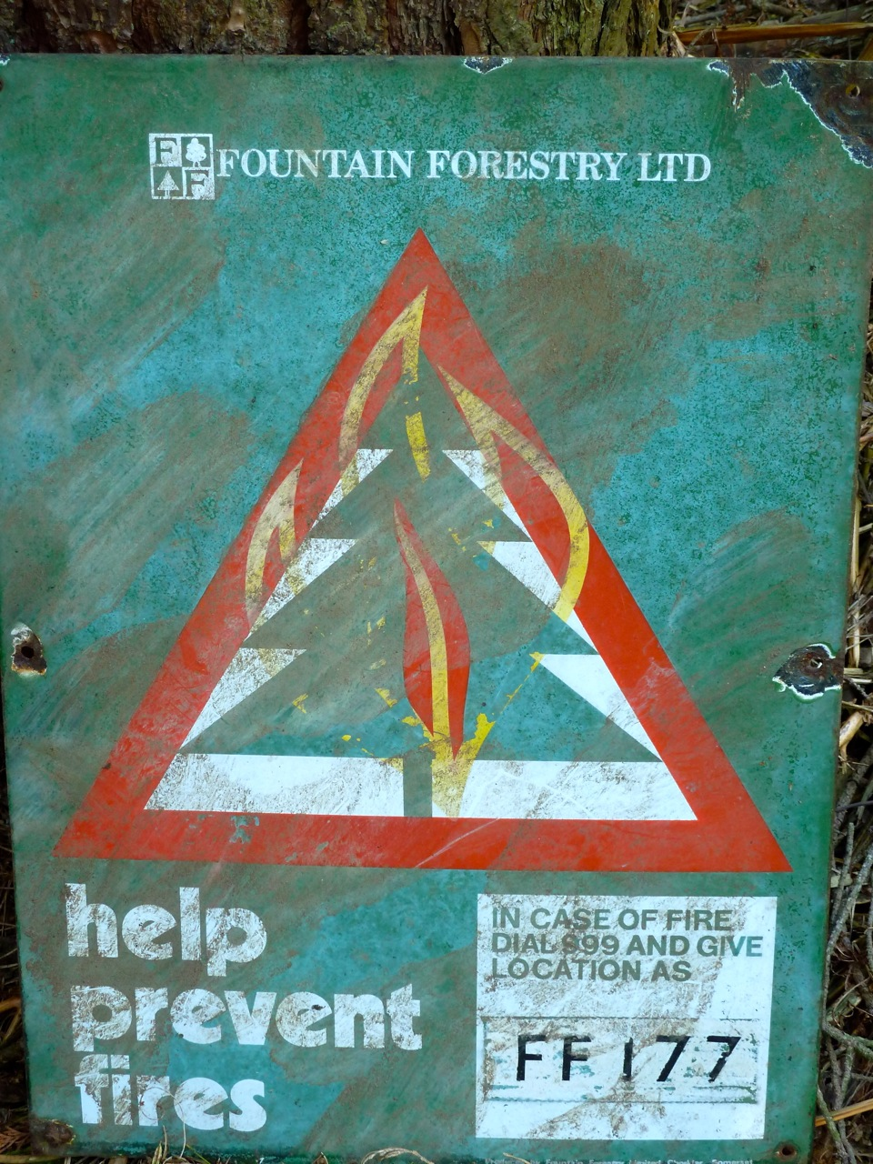 Help prevent forest fires
