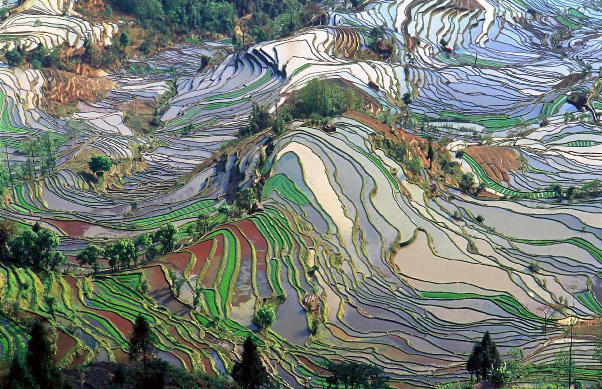 Colorful-terrace-field-in-Yunnan