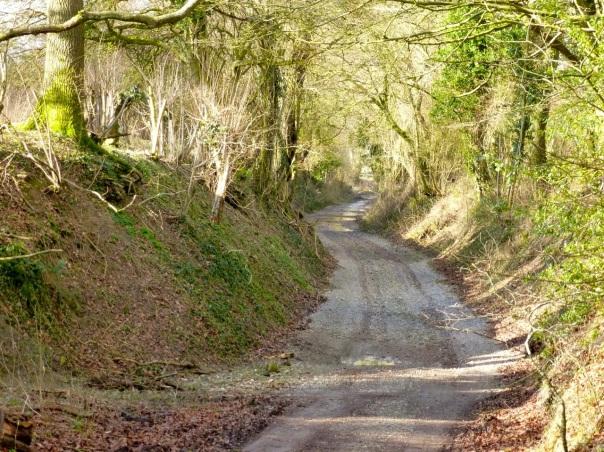 Greenway Track