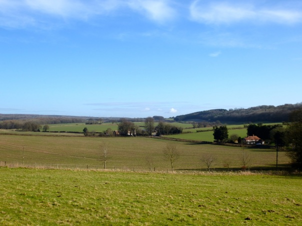 Hampshire downland