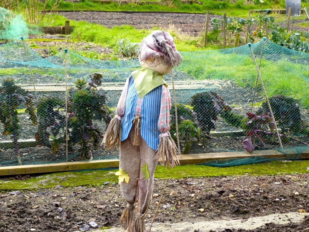 Scarecrow at East Meon Allotments