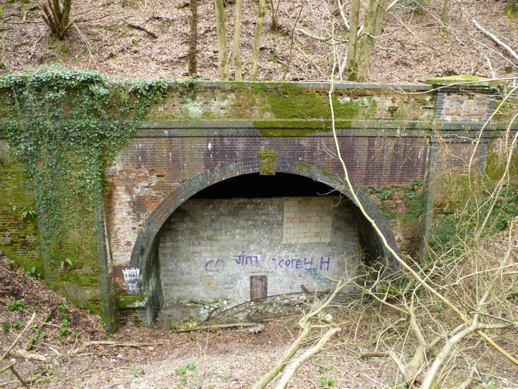 Privett Tunnel North