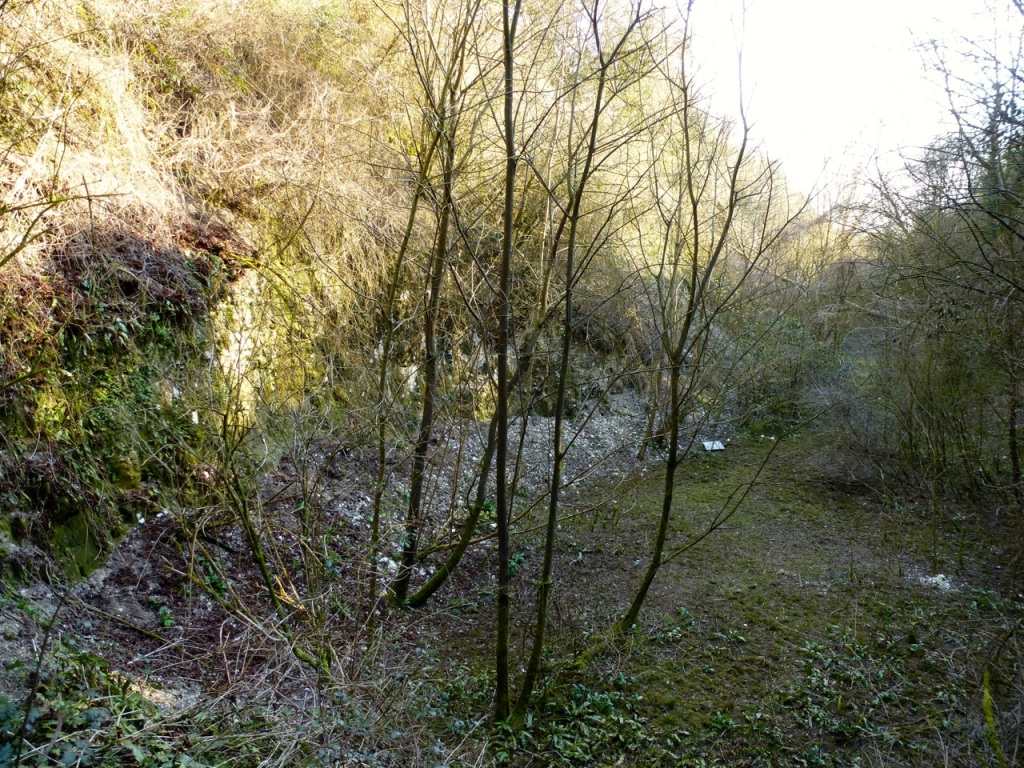 Cutting south of West Meon railway tunnel