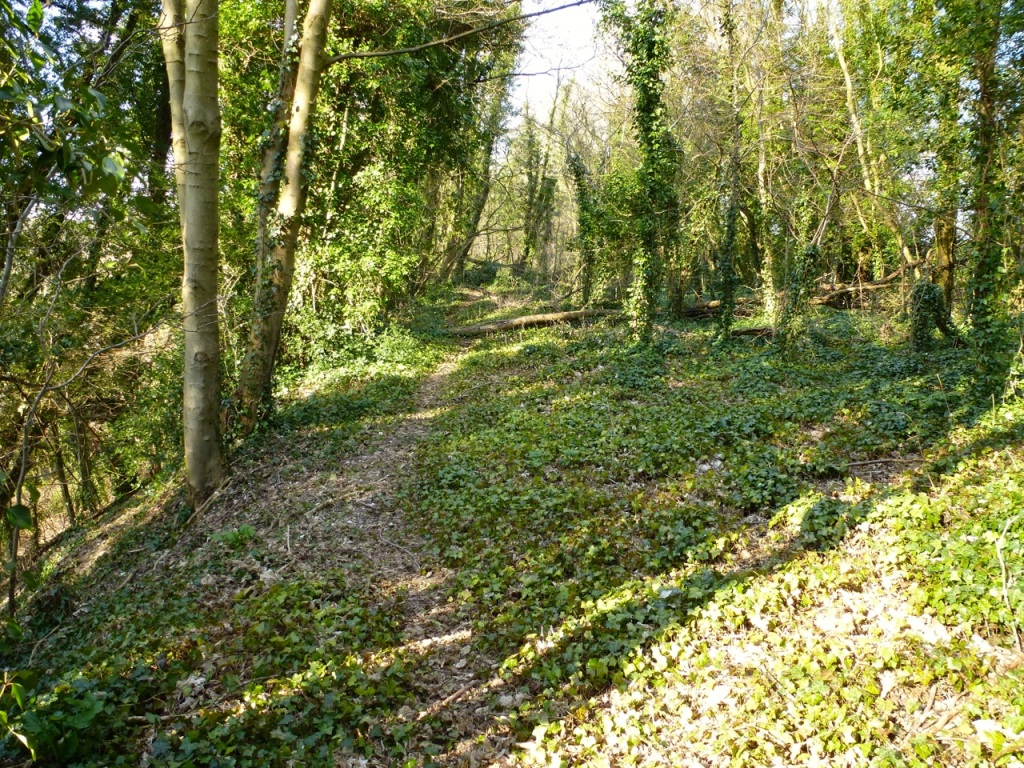 Dismantled railway north of West Meon