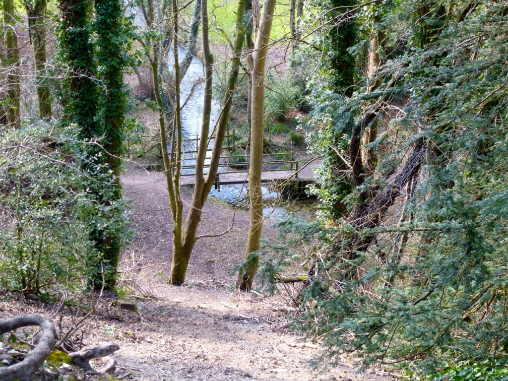 West meon embankment south of viaduct-2
