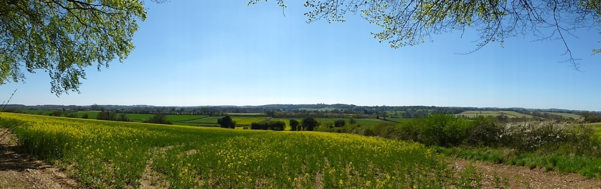 Southern panorama