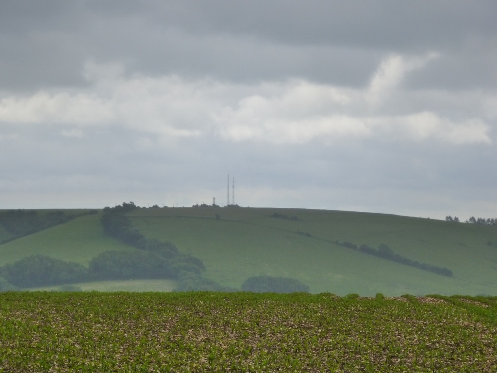 Salt Hill South Downs