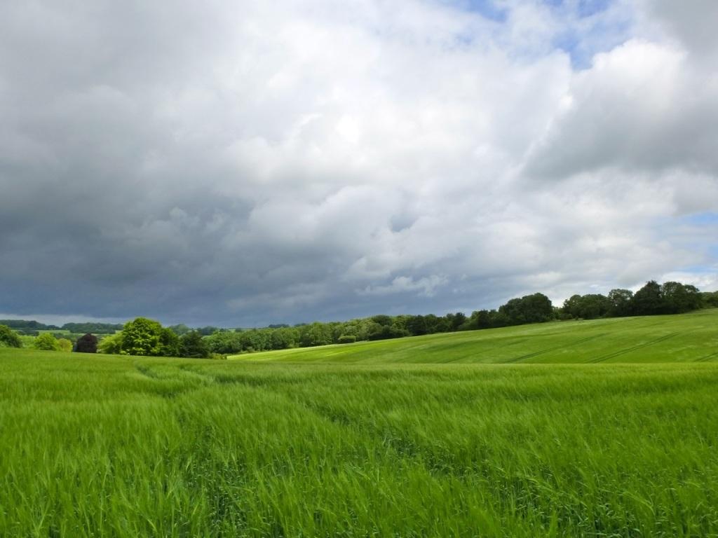 Westbury Park Hampshire