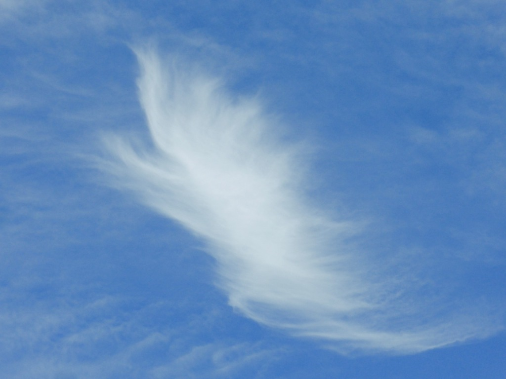Wispy cloud