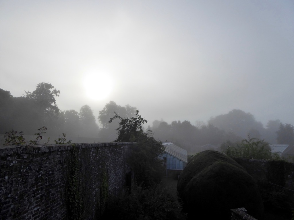 Misty morning early September