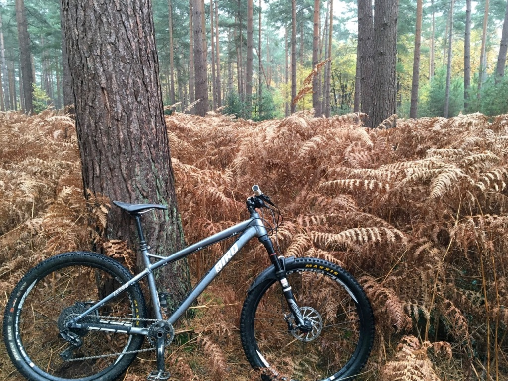 Bird Zero TR Mountain Bike Demo, Swinley