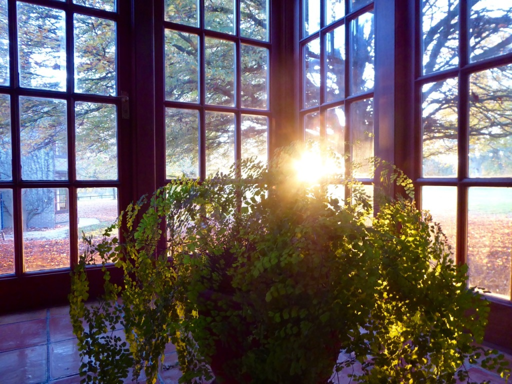 Sunset through windows