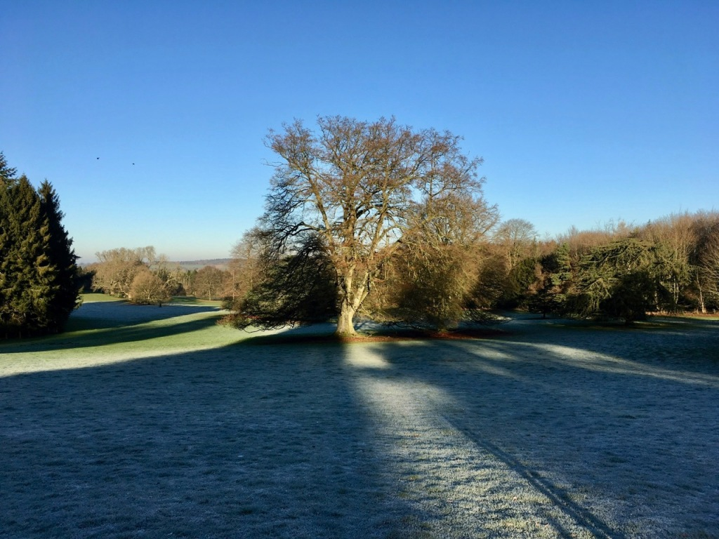 Light, frost, shadows